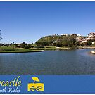 Foreshore Park - Newcastle by reflector