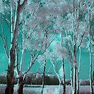 River of Dreaming by kjezt