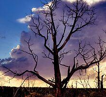 Desolate Mesa Verde by RayDevlin