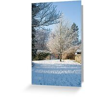 Delicate Snow Tree   Greeting Card
