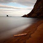Saltwick Bay Driftwood by PaulBradley