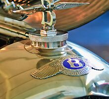 1927 Bentley 6 1/2 Litre Sports Tourer Hood Ornament by Jill Reger
