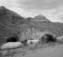 Big Horn Cloudscape 2 by terriclark