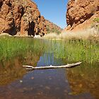 Glen Helen Gorge - West Macdonnell Ranges by Linda Fury