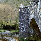 Fingle Bridge by Charmiene Maxwell-batten