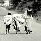 Rural India by Umashanker T