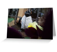 Howdy penguin Greeting Card