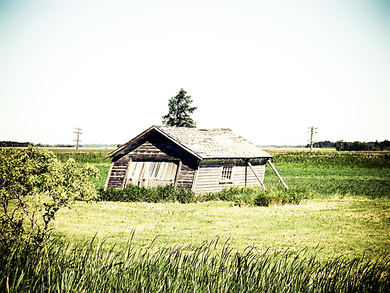 Old Leaning Shack by mdkgraphics