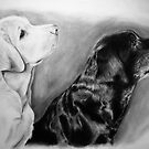 Jem and Tarka - Dog Portraits by Reuben Vick