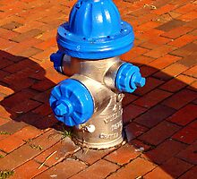 Silver and Blue Hydrant by Rodney Williams