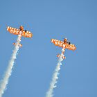 Breitling Wingwalkers at the Bournemouth Airshow 3 by Red47