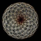 Fibonacci's Fractal Spiral Symmetry by Atılım GÜLŞEN