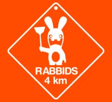 Rabbids in 4km by biglime