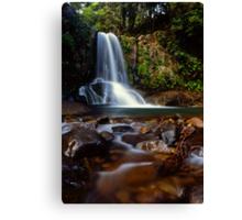 Waiau falls Canvas Print