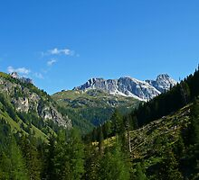 The Beautiful Alps. by Lee d'Entremont