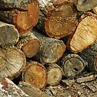 Wood Stack by 2HivelysArt