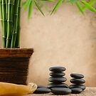 Balance and Bamboo 3 by ntd0277