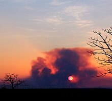 bush fire sunset over the derby marsh by nicole makarenco