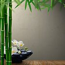Massage Stones and Bamboo by ntd0277