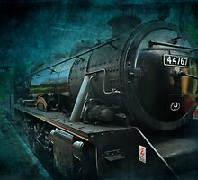 Train by Svetlana Sewell