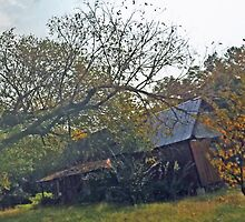 Old House On County Road 24 by Charldia