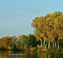 Autumn panorama by RosiLorz