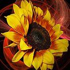 Sunny by Mistyarts