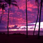 Kapaa Kauai Sunrise by Brian Harig
