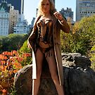 Central Park Exibition by bertipictures