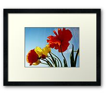 Flowers in the Window Framed Print