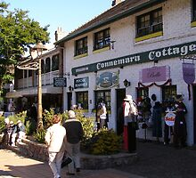 Specialty Shops at Montville, on the Blackall Range.Q by Rita Blom