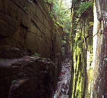 Flume Gorge, The Look Back by neview