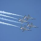 USAF Thunderbirds by Karl R. Martin