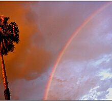 Rainbow Sunset by Chet  King