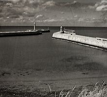 Whitby Pier by Neil Clarke
