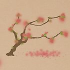 Cherry Blossom  by rob0234