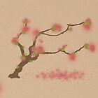 Cherry Blossom  by rob0234