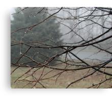 Fog Hangs Heavy Canvas Print