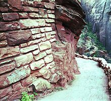 Refrigerator Canyon, Zion National Park by James2001