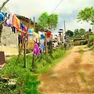 Laundry in the country road by Esperanza Gallego