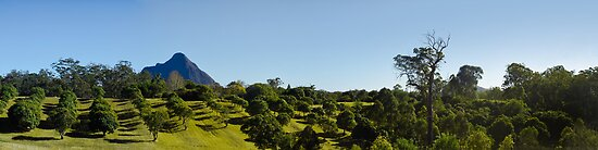 Glasshouse Mountains, QLD - Australia by Jason Asher