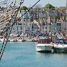 Across the harbour by TerriBethell