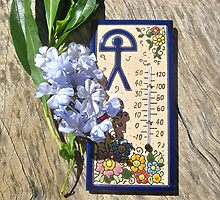 Ceramic tile thermometer from Spain by Indalo