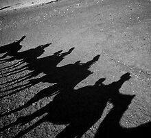 The Caravan of Shadows by ArtDiana
