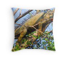 Iguana royal - siesta time Throw Pillow