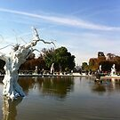 White tree in fountain - Jardin des Tuileries, Paris by mightymite