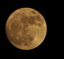 Full Moon by BreezyG