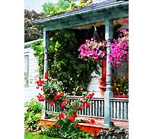 Hanging Baskets and Climbing Roses Photographic Print