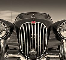Jaguar XK 150 by Geoff Carpenter