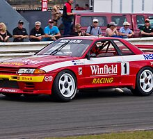 "Skaife/Richards R32 Nissan Skyline Gp A ""Godzilla"" by TGrowden"